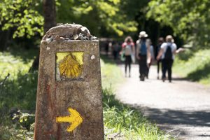 Guide to Camino de Santiago 9