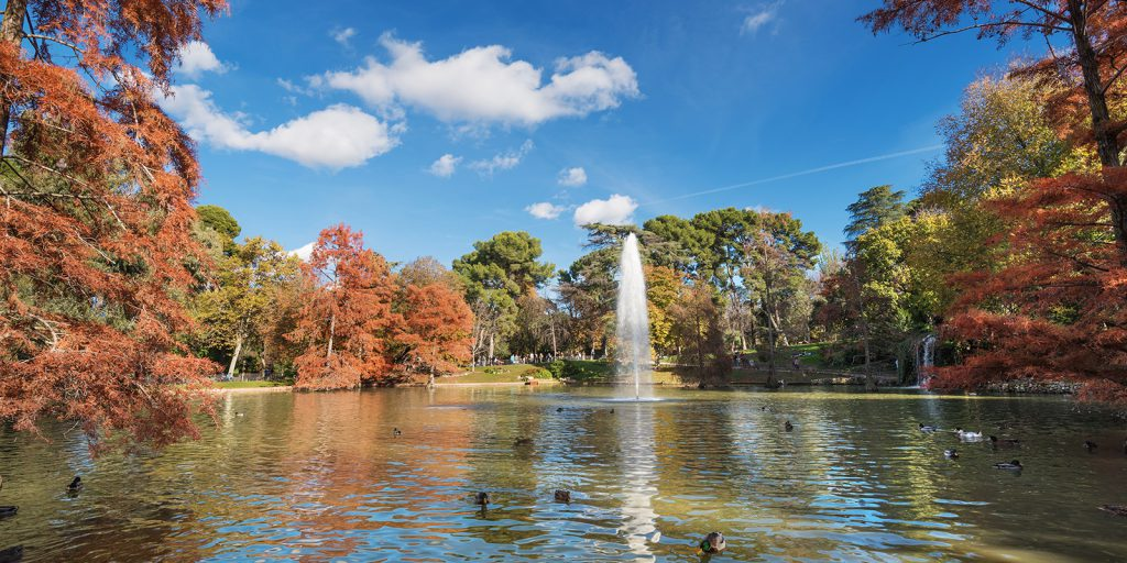 autumn view of Retiro park