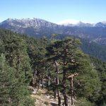 Rural escapes - Sierra de Guadarrama