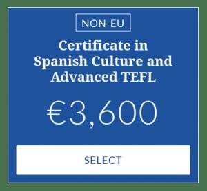 Advanced TEFL Course - University visa
